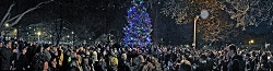 2nd Annual Oz Park Holiday Tree Lighting Ceremony