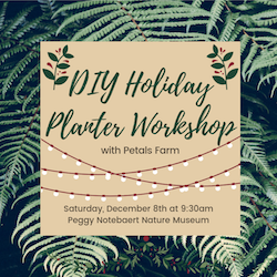 DIY Holiday Planter Workshop with Green City Market