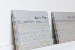 Gallery Conversation and Book Signing with Julia Fish at the DePaul Art Museum