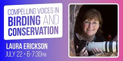 The Love Lives of Birds with Laura Erickson and the Peggy Notebaert Nature Museum