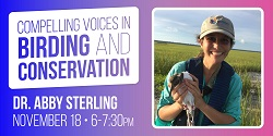 Wind Birds Over the Windy City: Stories of Shorebird Conservation and the Peggy Notebaert Nature Museum