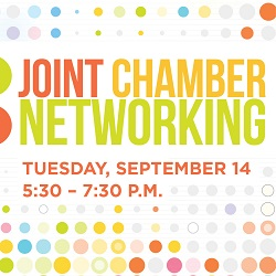 2021 Joint Chamber Networking with Lincoln Park, Lakeview Roscoe Village, Lakeview East, and Old Town