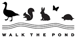 Walk The Pond 2021 with the Lincoln Park Conservancy