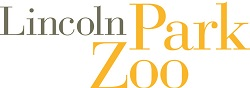 Adults Night Out at Lincoln Park Zoo