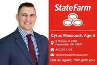 Cyrus Massoudi State Farm