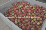 Ableman's  Apple Creek Orchard