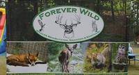 Forever Wild Wildlife Rehabilitation Education & Sanctuary