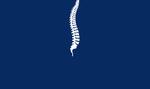 Palm Beach Spine Institute