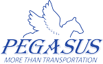 Pegasus Group International Inc
