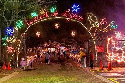 Zoo Christmas Lights
