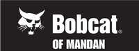 Bobcat of Mandan