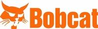 Bobcat of Brainerd