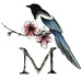 Magpies & Magnolia's Boutique