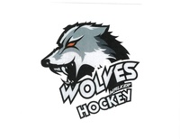 Walker Youth Hockey