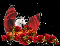 Wild Rose Ranch LLC
