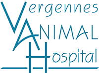 Vergennes Animal Hospital