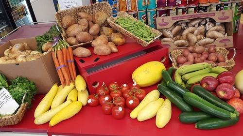 Gallery Image vegetables.jpg