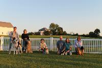 CHK offers fun group obedience classes!