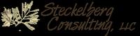 Steckelberg Consulting, L.L.C.