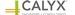 CALYX Engineers & Consultants