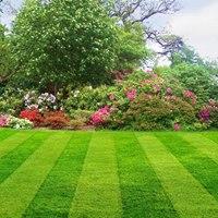 Gallery Image 13466520_1171508616202934_900473287613513710_n.jpg