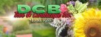 DCB Tree & Landscape