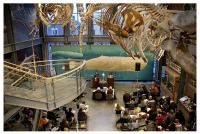 Each year the Museum hosts the popular Moby-Dick Marathon