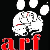 ARF - Jackson County Humane Society