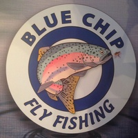 Blue Chip Fly Fishing
