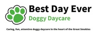 Best Day Ever Doggy Daycare LLC