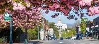 Town of Sylva