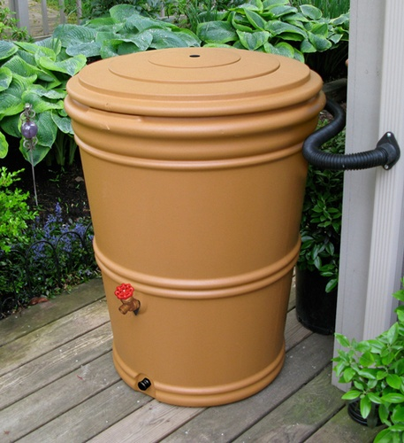 Rain Water Barrel