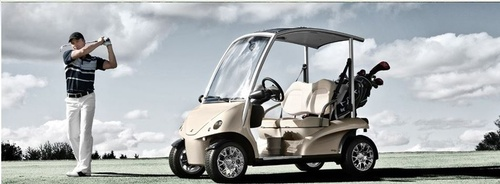 Cart Mart, San Marcos, CA, Golfer with Golf Cart. Golf Carts, Utitility Vehicles, p10