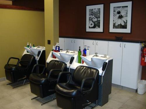 Gallery Image Salons%20For%20You_Shampoo%20Station.JPG