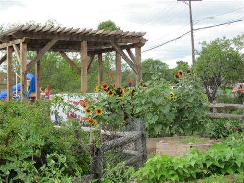 Outdoor garden and play space