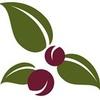 Newburyport Olive Oil Company & Port Plums