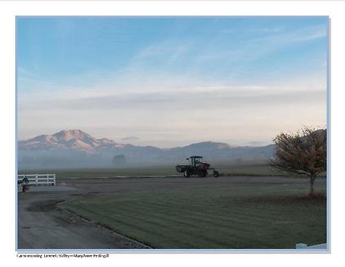 Gallery Image Farm%20morning%202_%2011.7.14.JPG