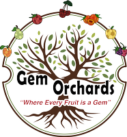 Gem Orchards