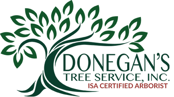 Donegan's TreeService