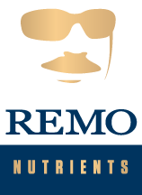 Remo Brands Inc.