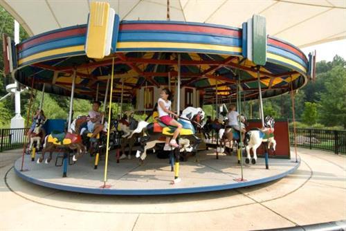 Gallery Image Carousel%203.jpg