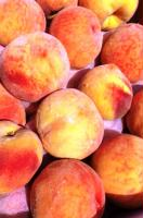 Gallery Image more%20peaches.jpg