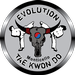 Evolution Tae Kwon Do Monticello LLC. (fo