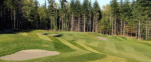 Gallery Image WH%20golf2.JPG