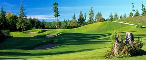 Gallery Image WH%20golf5.JPG