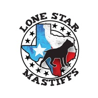 Lone Star Mastiffs LLC