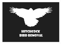 Hitchcock Bird Removal