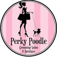 Perky Poodle Dog Grooming