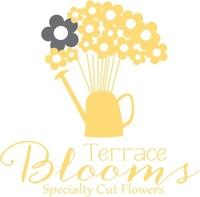 Terrace Blooms