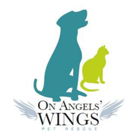 On Angels' Wings Resale Store and Pet Rescue